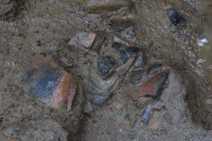 写真は、沢跡の上層で出土した土器です。
